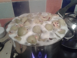 Quinces just under boiling, about to make a break for it