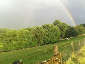 rainbow part 1