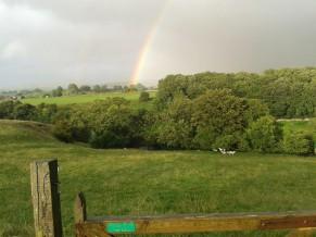 Rainbow part 2